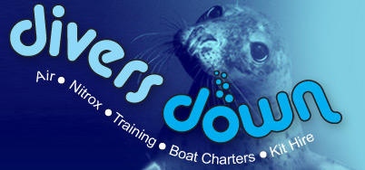 Divers Down Swanage  logo