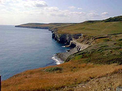 Click to view Dancing Ledge and Jurassic Coastline
