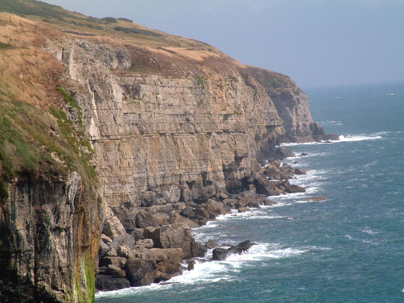 Dancing Ledge and Cliffs