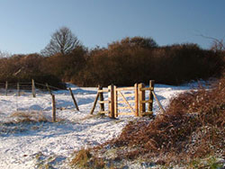 Click to view Snow at the Townsend Nature Reserve