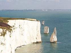 Old Harry and The Pinnacles - Ref: VS558
