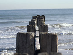 Old groynes  on the Beach - Ref: VS653