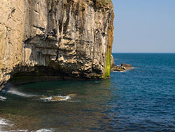 Click to view Dancing Ledge Cliffs