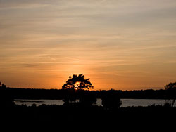 Click to view Studland Sunset