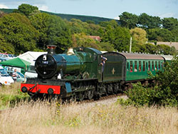 Steam Gala 7902 - Ref: VS1297