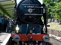 Click to view 60163 Tornado at Swanage Station