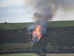 Click to view Burning Gorse