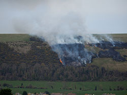 Burning Gorse on the Purbeck Hills - Ref: VS1378