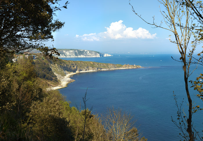 The Two Bays from Durlston Bay