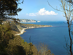 Click to view The Two Bays from Durlston Bay