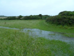 Durlston Flooding - Ref: VS1403