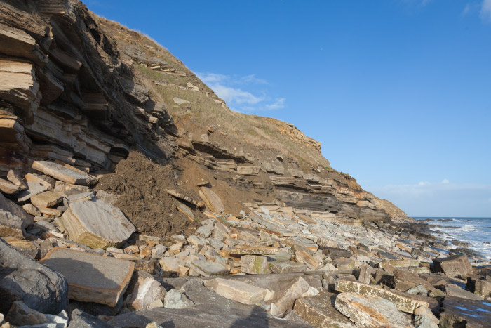 Durlston Bay Landslides