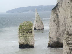 Click to view Old Harry Rocks