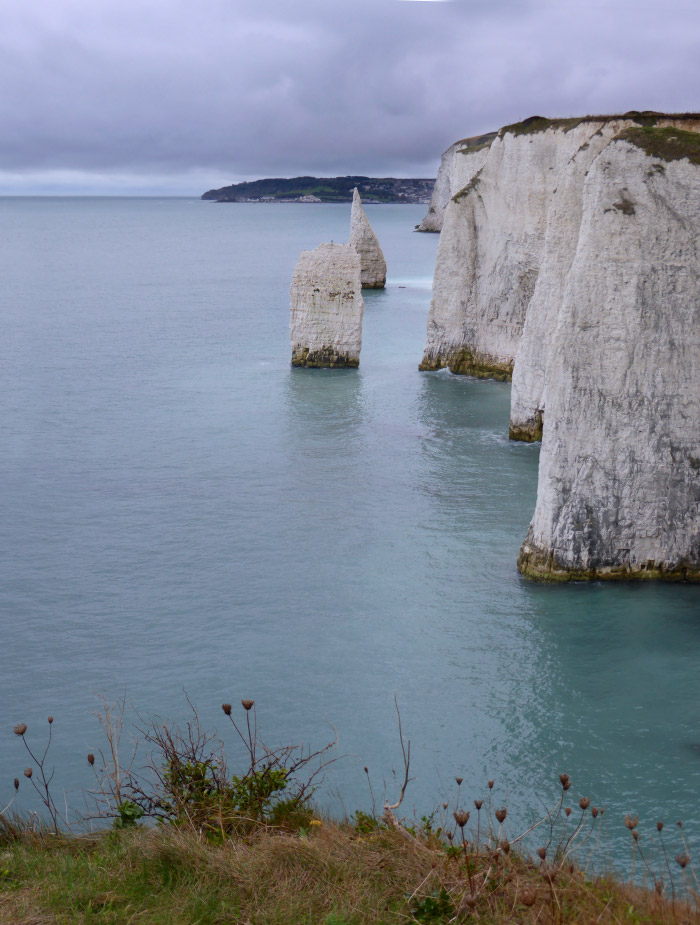 Looking to Swanage from Old Harry Rocks