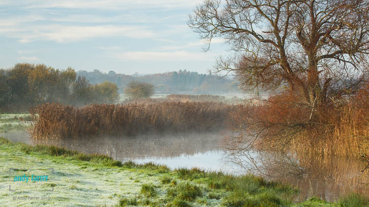 River Frome Mist