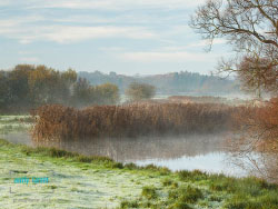 Click to view River Frome Mist