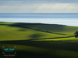 Click to view Kimmeridge Greens