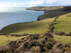 Click to view Jurassic Coastline above Dancing Ledge