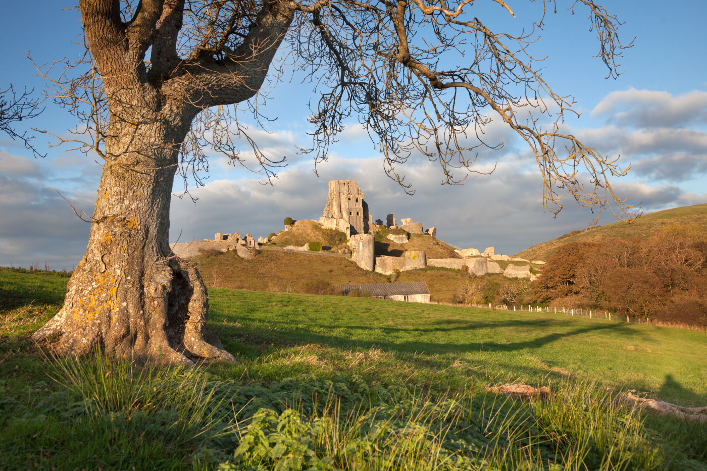 Corfe Castle in the Autumn