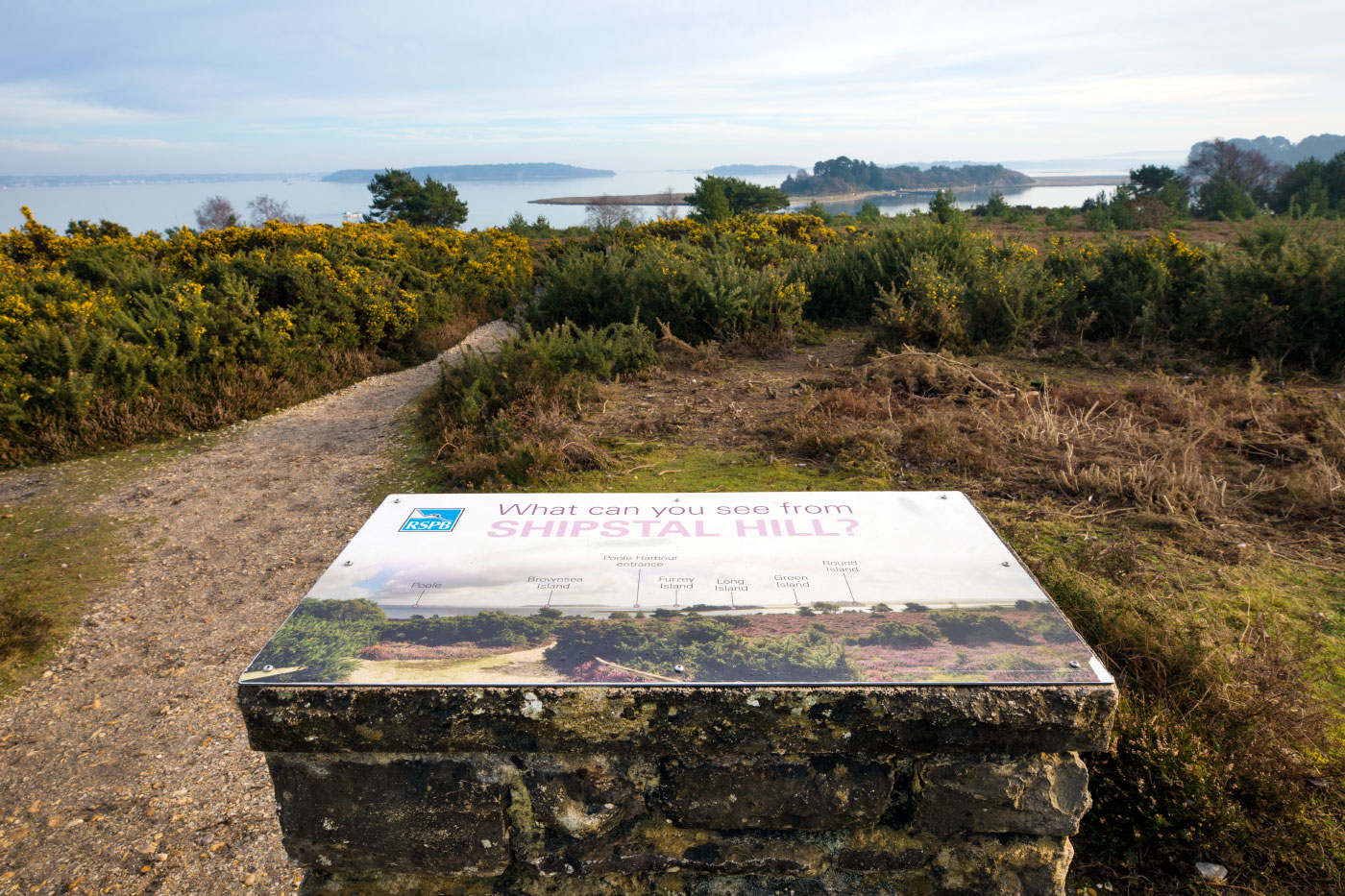 Poole Harbour and Arne Nature Reserve