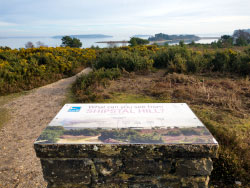 Click to view Poole Harbour and Arne Nature Reserve