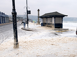 Shore Road Foam - Ref: VS1827