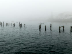 Click to view Fog at the old pier