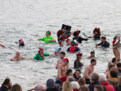 Boxing day Swim - Ref: VS1887