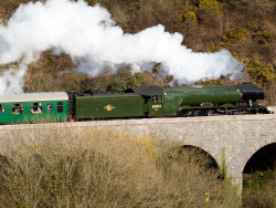 Click to view Flying Scotsman at Corfe Castle Viaduct
