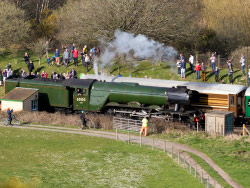 Click to view Flying Scotsman at Norden Station