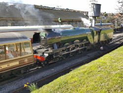 Click to view Flying Scotsman at Swanage Station