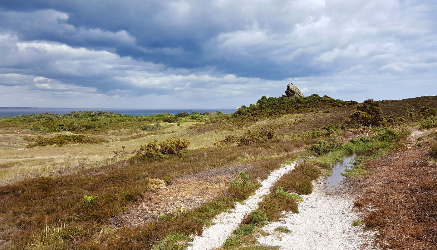 Stormy Skies over Agglestone Rock
