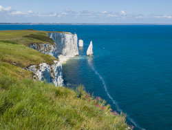 Click to view The Pinnacles near Old Harry Rocks
