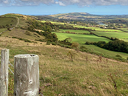 Click to view Along the Purbeck Hills