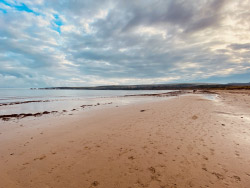 Click to view Studland beach at low tide